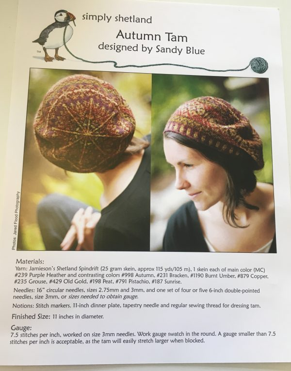 B0343966 1E05 4514 8617 3871E3B517F5 600x766 - Autumn Tam Hat Pattern